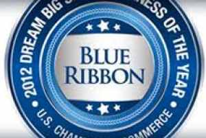greeNEWit Receives 2012 U.S. Chamber of Commerce Blue Ribbon Award